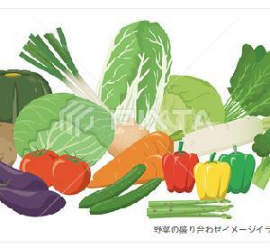 野菜の盛り合わせのイラスト素材/PIXTA