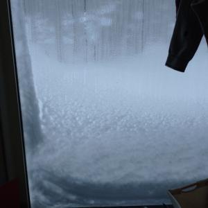 コロナ禍の猛吹雪⛄(R2.3.6~)札幌へ✈