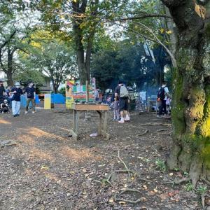 初めて見た羽根木公園の景色