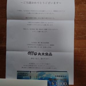【当選】金券2件