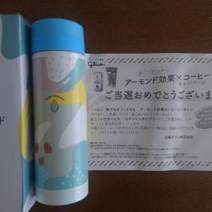 【当選】ステンレスボトル