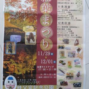 紅葉まつりに出店 静岡県御殿場市秩父宮記念公園