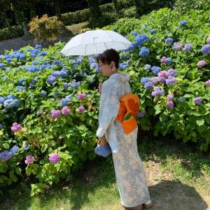 花しょうぶと紫陽花を見に