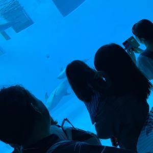着物で名古屋港水族館へ