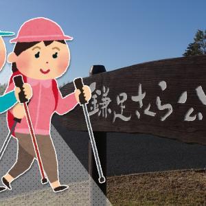 【矢那川ダム周辺の秋を散策】「第19回秋の市民歩け歩け大会」が11月23日(土・祝)に開催!