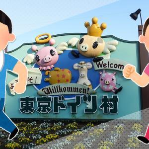 【今回は東京ドイツ村!】「ウォーキングフェスタ2020in袖ケ浦」が3月8日(日)に開催!