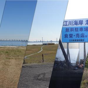 【潮干狩り自粛解除】木更津市内の潮干狩りが6月5日(金)より再開します