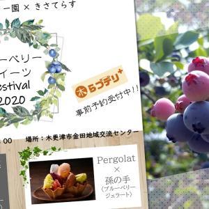 【木更津のブルーベリーを味わおう】「ブルーベリースイーツFestival2020」が7月12日(日)に開催!