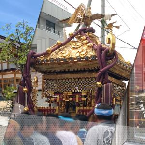 【30年に一度の大神輿改修事業が無事完了】「関東一大神輿令和改修完了報告祭」が6月20日(日)に斎行されます。