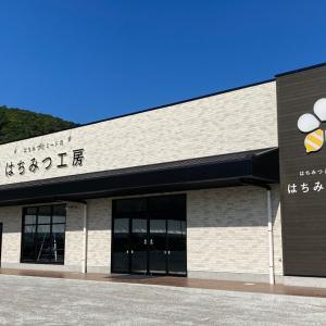 【日本で唯一】観光のできるミード(はちみつ酒)専門ミーダリー「はちみつとミードのはちみつ工房」が9月1日(水)オープン!