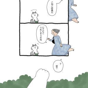 ねこきつさ㊱「空を見上げて」