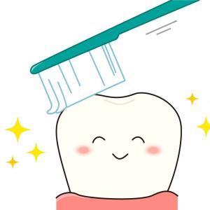 歯医者やっと終わった(^o^)