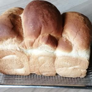 食パン、初挑戦。