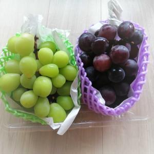 果物の食べ方