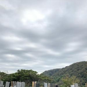 ♡お墓参り&スワロブローチ@逗子葉山
