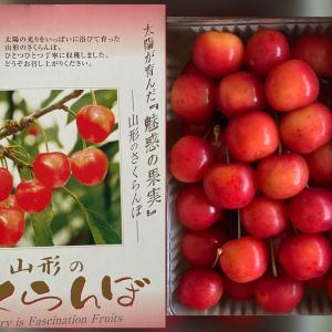 ♡山形の紅秀峰・さくらんぼ&お昼ご飯