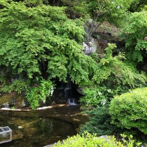 ♬令和元年・最初のGW旅@埼玉県秩父・羊山公園・芝桜の丘 ⑥