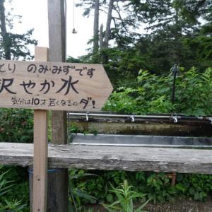 猛暑の雲取山☆奥多摩小屋でテント泊#5~雲取山を越えて三峯神社へ(後半)