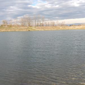寒波襲来前のなら山沼