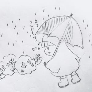 梅雨が来る!