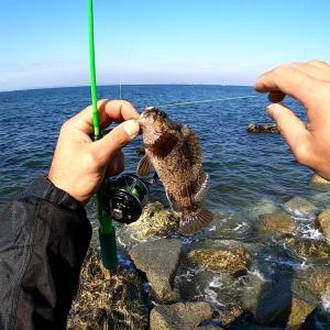 ボウズ逃れの穴釣りに超夢中!!根魚の穴釣りが面白い!