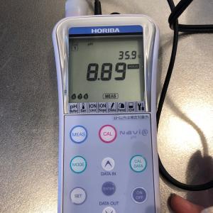 マグネシウム洗濯~検証・洗濯水のHP値は?~