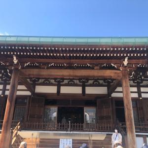 大阪へ~お墓参りと久しぶりの実家~