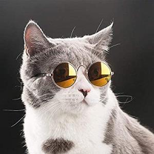 【衝撃】やはり猫は液体だった……!?ケージから見事に脱出する、お見事な溶けっぷりの猫ちゃんが目撃される