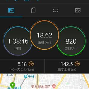 10月14日(大阪市18.6 km)