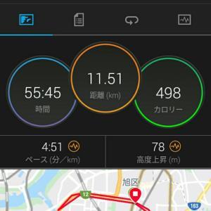 10月29日(大阪市11.5km)