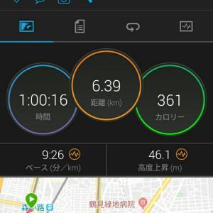 11月4日(大阪市6.4km)ウォーキング