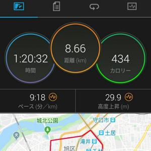 11月16日(大阪市8.6km)ウォーキングと七五三