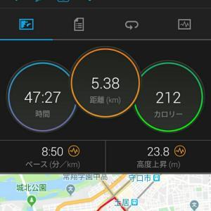 11月18日(大阪市5.3km)ウォーキング