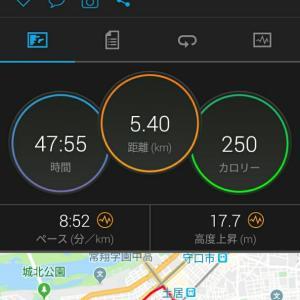 11月19日(大阪市5.4km)ウォーキング