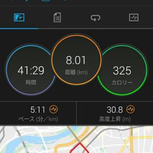 11月24日(大阪市8km)