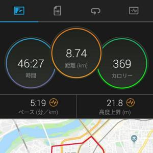 12月9日(大阪市8.7km)