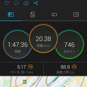 1月28日(大阪市20.3km)