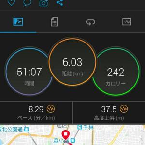 5月29日(大阪市6km)ウォーキング