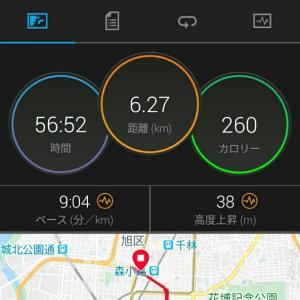 6月6日(大阪市6.2km)ウォーキング
