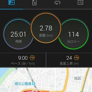6月14日(大阪市8.2km)+ウォーキング
