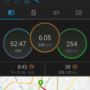 6月24日(大阪市6km)ウォーキング