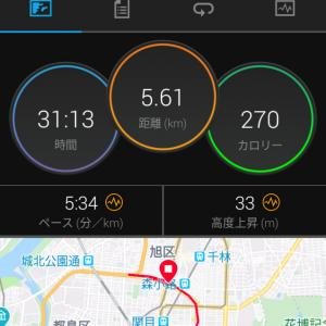 7月31日(大阪市5.3Km+α)