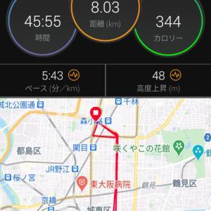9月15日、17日(大阪市8Km)