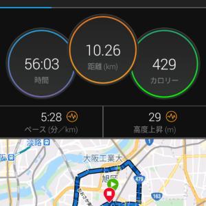 10月29日(大阪市10.2km)