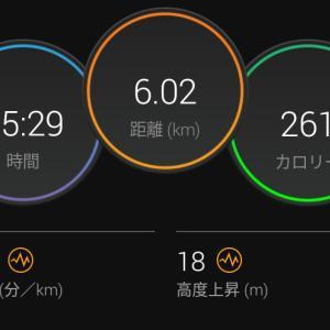 6月3日(大阪市6km)寝坊、結婚記念日、カンパーニュ