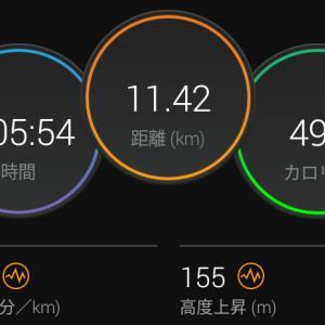 6月7日(大阪市11.4km)