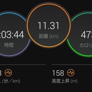6月11日(大阪市11.2km)鉄分は大事。