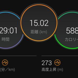 6月20日(大阪市15km)