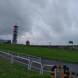 6月22日(大阪市11.3km)