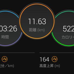 6月29日(大阪市11.6km)シャワーラン